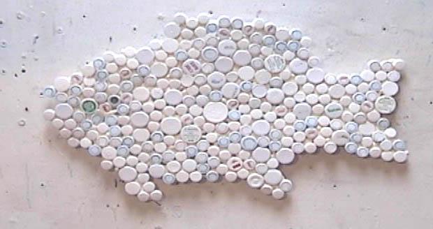 Caps fish for White cap fish